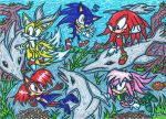 .:Request:. Freedom Fighters Playing With Dolphins by AceOfSpeed94