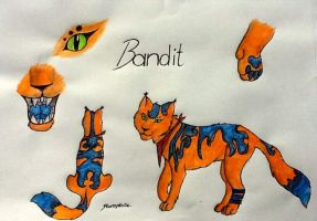 New Chara sheet: My Fursona Bandit by TheGingerBandit