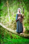 Dragon Age: Origins - Arlathan 2 by HayleyElise