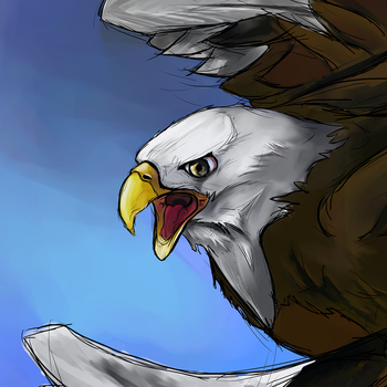 Eagle by EsEnNodormir