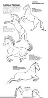 How to draw Classical Dressage Movement by sketcherjak