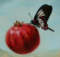 Fly By Fruitie Pomegranate - d by LindaRHerzog