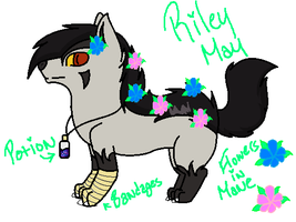 Riley-May The Poochyena by RoninHunt0987