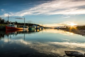 Little Judique Harbour by steverankin