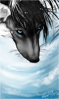 .:Blues Sky Soul:. by WhiteSpiritWolf