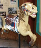 Gage Park Carousel 5 by Falln-Stock