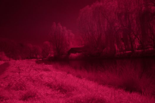 IR Shot another one. by murknl