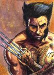 The Wolverine by Jerantino
