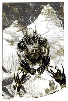 Wolverine in Snow Inkwash by ardian-syaf