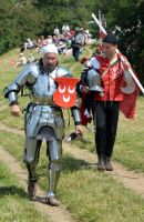Kenilworth Castle Joust 2014 (2) by masimage
