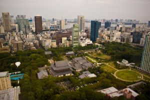 View from Tokyo Tower 3 by MarcAndrePhoto