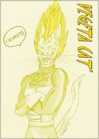 Vegeta Cat' by SarayPeke85