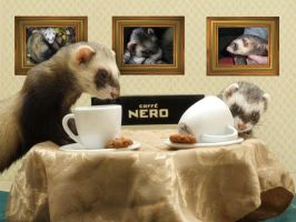Cafe Nero by Allhailtotheferrets