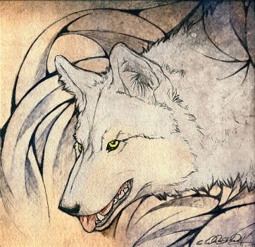 -Wolf Reincarnation- by WhiteSpiritWolf