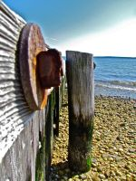 rust and wood by pmiccich