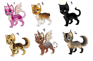 Cat Adoptables (CLOSED) by WindyAdopts