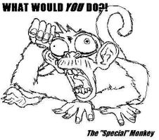 """The """"Special"""" Monkey by Serraxor"""
