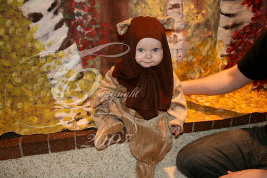 Baby Ewok by TheIcePixy