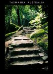 The Steps by nains