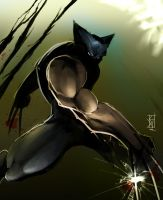 Wolverine - Marvel by TheRisingSoul