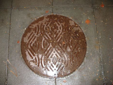 Manhole Cover or Time Lord Seal? by Doctorwholovesthe80s