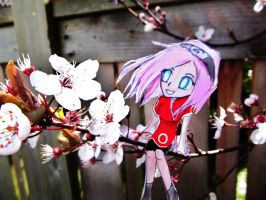 Sakura's Cherry Blossom by Checker-Bee