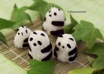 Panda Bear Rice Balls n We Heart Autumn by theresahelmer