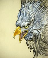 Enraged Eagle by HouseofChabrier