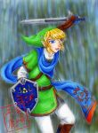 The Hyrule Warrior by kojika