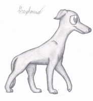 Greyhound by Pupster0071