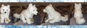 .: Webkinz Signature Arctic Fox :. by Dunkin-Prime