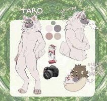 Taro Reference by s-trawberrymilk