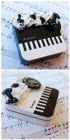 Piano contact cases by AndyGlamasaurus