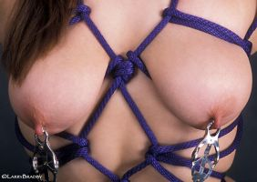 Nipple clamps and rope by larrybradbyphoto