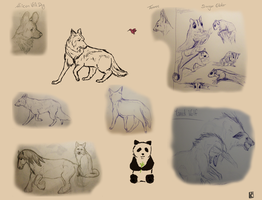 sketchpage 8 by CaledonCat
