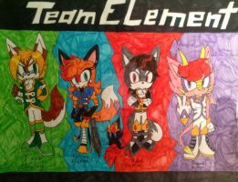 Team Element: the poster! by WickedZekrom