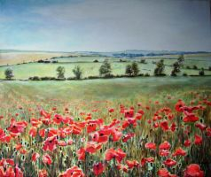 Poppies in Wiltshire by andylloyd
