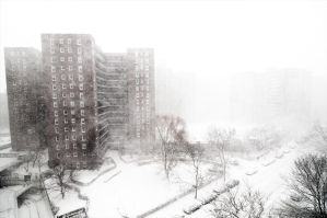 Snow Storm in New York by fayerman