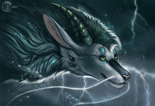 The storm by FlashW