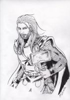 Complete Thor by blueriza