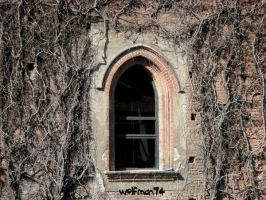 ghost window by wolfman74