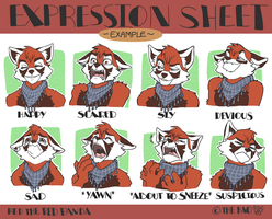 Expression Sheet Example by TheK40