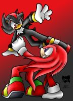 Shadow VS Knuckles by ButterflyPenguin