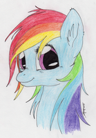 Pretty Pretty Rainbow Dash by Shikogo