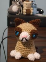 Grumpy Cat by GoldenEnigma
