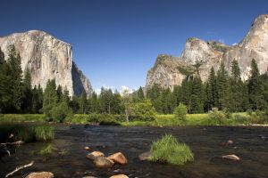 Yosemite in the summer by CheshirePhotographer