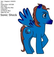 MLP - Sonic Shock Profile FIN by Wildnature03