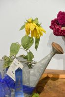 Topsfield Fair Flower Show 4 by Miss-Tbones