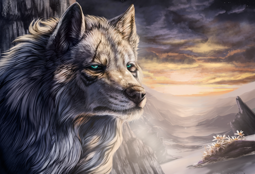 Zolf by WolfRoad