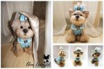 Needle Felted Yorkshire Terrie by KittenBlackUA